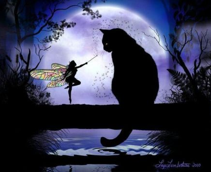 Faery and Cat